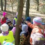 otvírání lesa,zahrady (10)