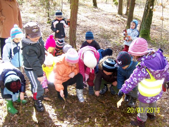 otvírání lesa,zahrady (11)