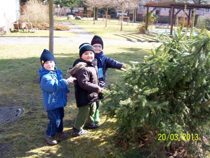 otvírání lesa,zahrady (3)