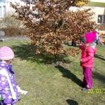otvírání lesa,zahrady (4)