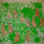 Austrálie - Klokan rudý, Klokan žlutonohý, Klokan Parryův