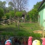 IMAG0343